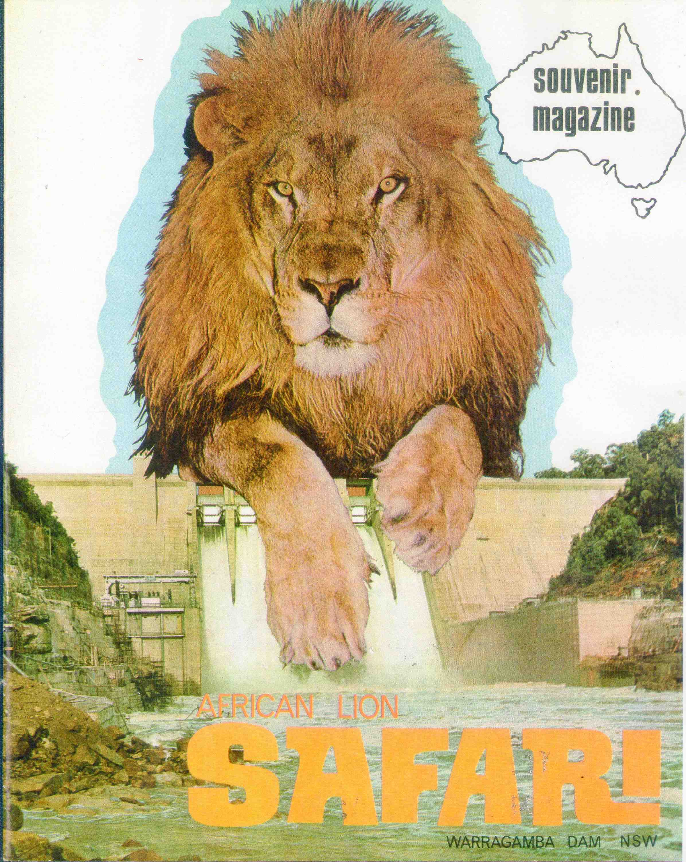 african lion research paper