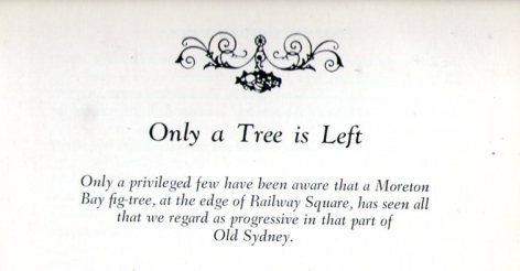 Sydney008