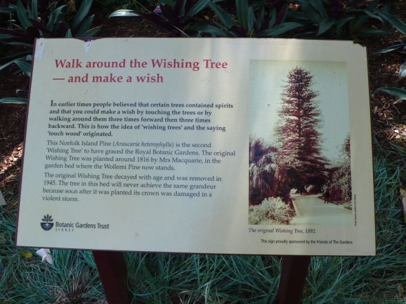 Wishing Tree sign