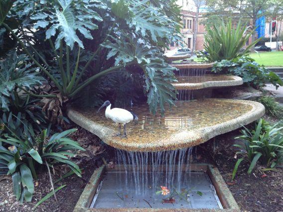 Ibis Hyde Park