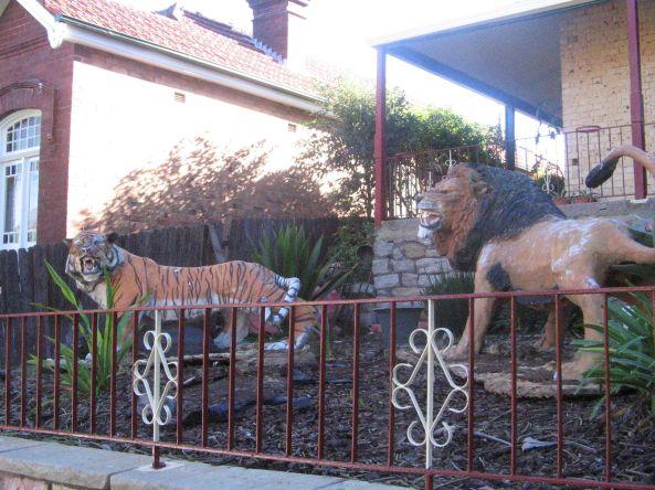 Tiger Yard Petersham
