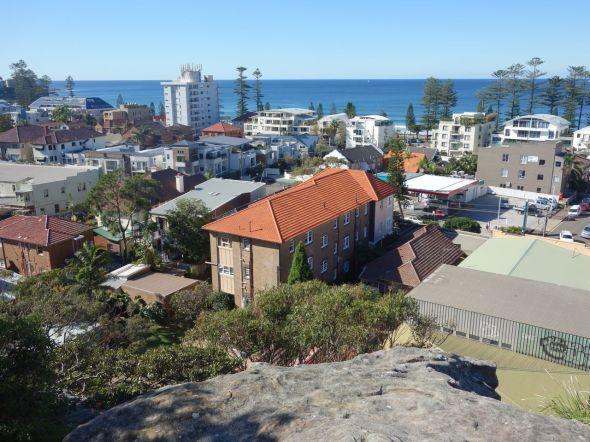 The Kangaroo's View