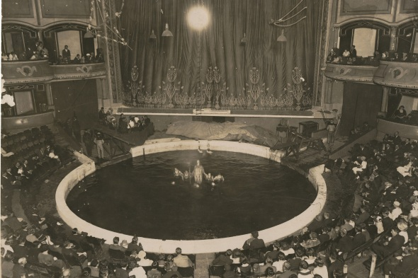2012/104/1-3/61 Photographic print, b&w, internal view of the Hippodrome building, Sydney, New South Wales, Australia, during a performance of Wirths' Circus, unknown photographer, used by Wirths' Circus family, Australia, c. 1920