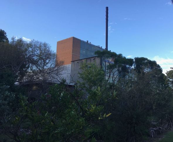 A factory behind trees.